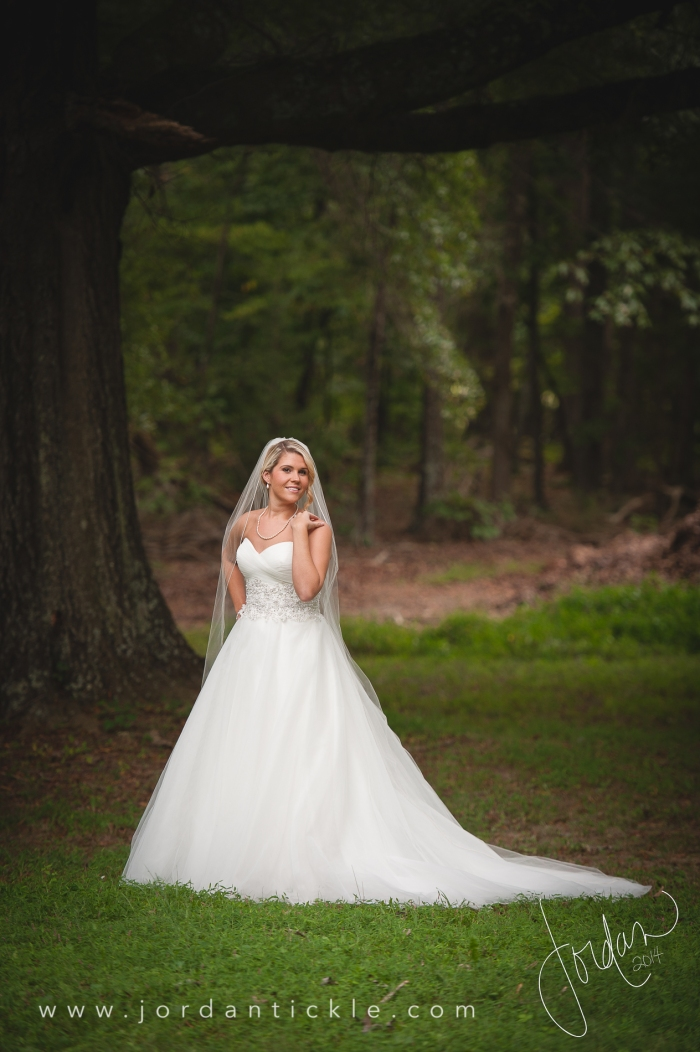 bridal_portrait_greensboro_wedding_photographer-1